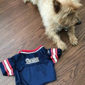 b39c08912 nfl Other - NFL branded (pup) jersey